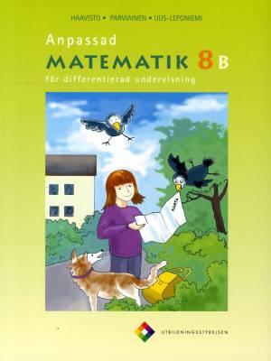 Anpassad matematik 8 B